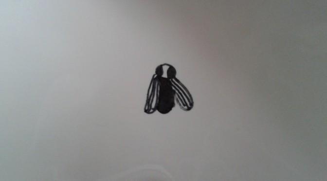 Een vliegje in het toilet?