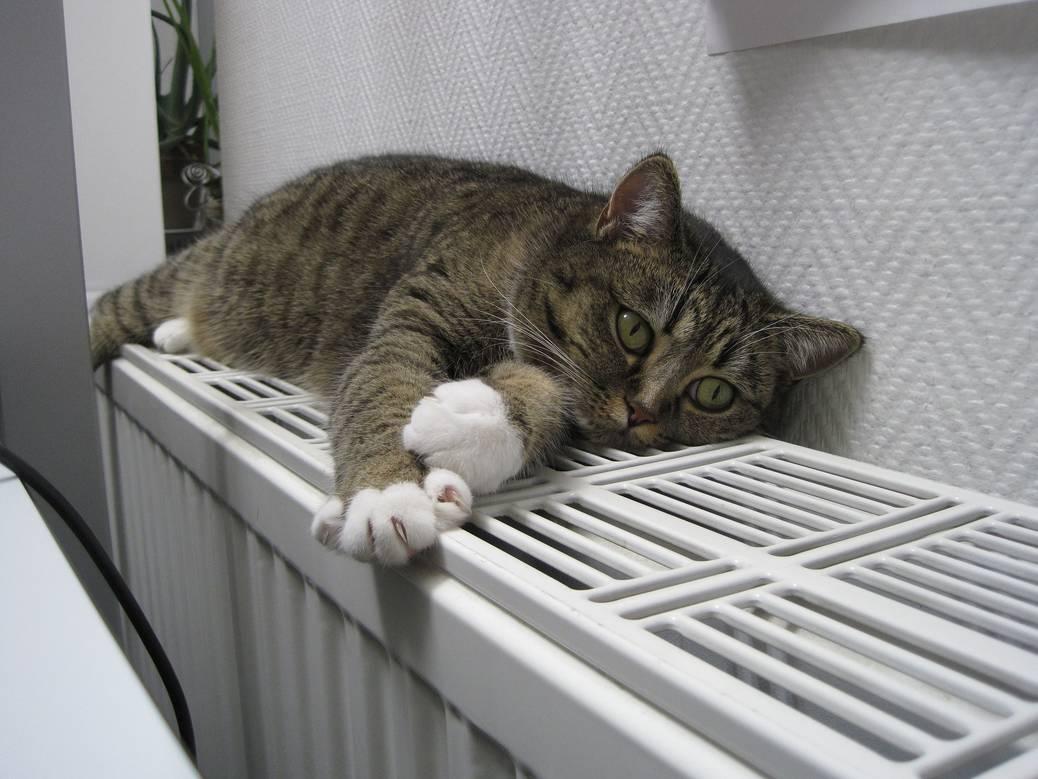 Je huis slimmer en goedkoper verwarmen