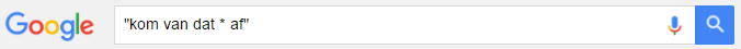google_wildcard