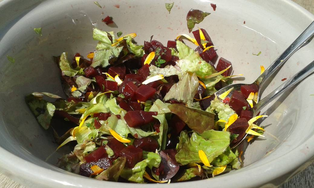 Koken met groenten uit de tuin: slaatje met rode biet