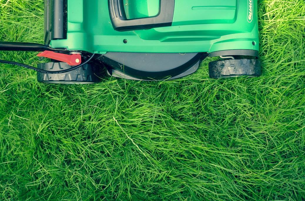 Hoe kies je de juiste grasmaaier?