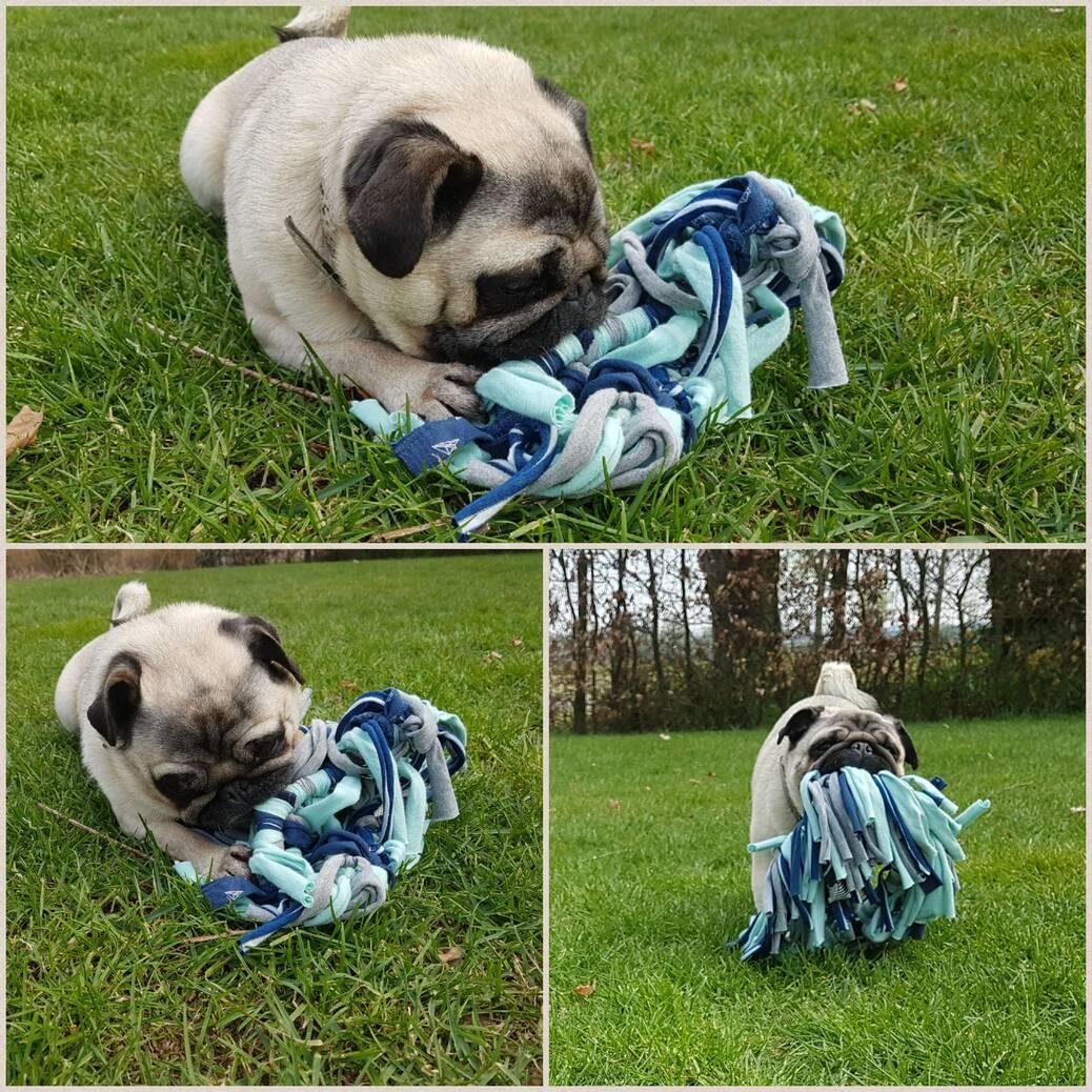 DIY: upcyclen hondenspeeltje van oude T-shirts
